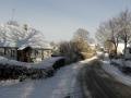 DECEMBER - 29. december. Mandemarke i vinterdragt