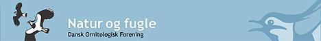 Dansk Ornitologisk Forening - klik for at besøge siden