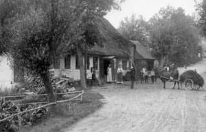 http://mandemarke.dk/wp/wp-content/uploads/2016/07/1-Købmanden-i-Mandemarke-1900.gif