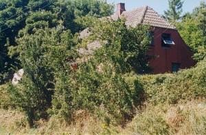 landsbyen_jesvivi