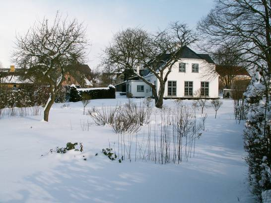 9 Fra haven 2005 vinter