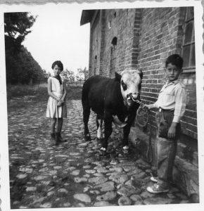 En tyrekalv, Benedikte og John