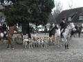 Heste og hunde samles